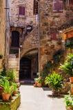 Vecchio cortile in Pitigliano in pieno delle piante Fotografia Stock