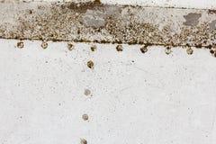 Vecchio dettaglio di alluminio di un æreo militare, corrosione superficiale del fondo Fotografia Stock