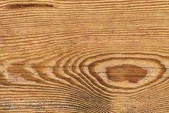 Vecchio dettaglio verniciato annodato stagionato di struttura di lerciume della plancia di Pinewood fotografie stock
