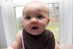Vecchio di sei mesi Fotografie Stock Libere da Diritti