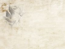 Vecchio diario di carta Immagine Stock Libera da Diritti