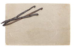 Vecchio documento con i baccelli di vaniglia isolati Immagine Stock
