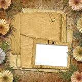 Vecchio documento con il crisantemo Fotografie Stock Libere da Diritti