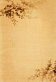 Vecchio documento con il disegno floreale Fotografia Stock