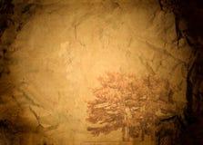 Vecchio documento sgualcito con un albero Fotografie Stock