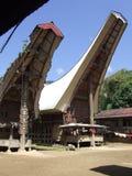 Vecchio e nuovo Tongkonans in Tana Toraja Fotografie Stock Libere da Diritti