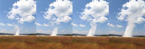 Vecchio fedele, Yellowstone Fotografia Stock Libera da Diritti