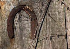 Vecchio ferro di cavallo Fotografia Stock Libera da Diritti