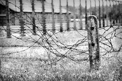 Vecchio filo spinato indossato su un campo, in bianco e nero Fotografie Stock Libere da Diritti