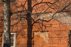 Vecchio fondo arrugginito della parete Immagine Stock Libera da Diritti