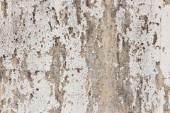 Vecchio fondo bianco-dipinto del muro di cemento Fotografia Stock Libera da Diritti