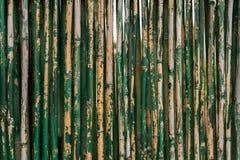 Vecchio fondo di bambù verde Immagini Stock Libere da Diritti