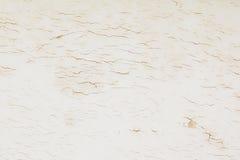 Vecchio fondo di cuoio lacerato di struttura Fotografie Stock