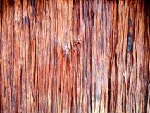Vecchio fondo di legno del primo piano di struttura della plancia Immagine Stock Libera da Diritti