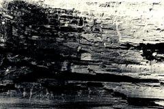 Vecchio fondo di legno di struttura in bianco e nero Fotografia Stock Libera da Diritti