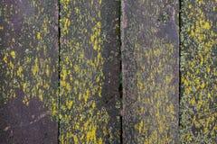 Vecchio fondo di legno di struttura della parete della plancia di Brown Immagini Stock