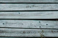 Vecchio fondo di legno grigio stagionato della parete della plancia Struttura dettagliata Fotografie Stock Libere da Diritti