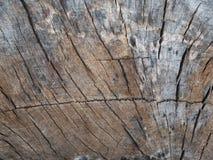 Vecchio fondo di legno di struttura del primo piano Immagini Stock Libere da Diritti