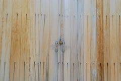 Vecchio fondo di struttura della carta da parati della casa della porta Fotografie Stock