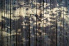 Vecchio fondo graffiato del bordo di legno con le ombre fotografia stock libera da diritti