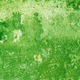 Vecchio fondo o struttura della parete di colore Fotografie Stock Libere da Diritti