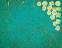 Vecchio fondo strutturato blu-chiaro con i fiori della margherita Immagine Stock