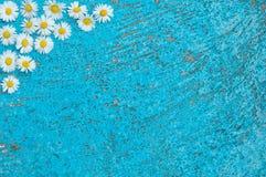 Vecchio fondo strutturato blu-chiaro con i fiori della margherita Fotografia Stock Libera da Diritti