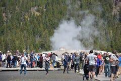 Vecchio geyser fedele al parco nazionale di Yellowstone Fotografia Stock