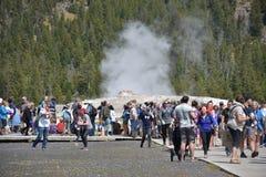 Vecchio geyser fedele al parco nazionale di Yellowstone Fotografie Stock Libere da Diritti