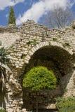 Vecchio giardino Fotografie Stock Libere da Diritti