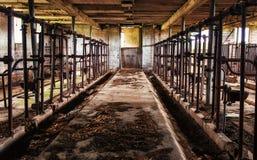 Vecchio granaio che munge le stalle - 2 Immagini Stock
