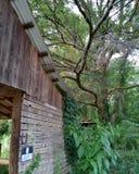 Vecchio granaio della puntina su un paese dell'azienda agricola del cavallo fotografia stock libera da diritti
