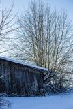 Vecchio, granaio di legno nella campagna ed albero Immagine Stock