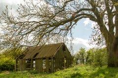 Vecchio granaio inglese Fotografia Stock