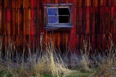 Vecchio granaio nel campo nella caduta tarda Autumn Brown Grass Weathered Red fotografia stock