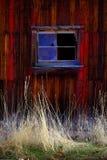 Vecchio granaio nel campo nella caduta tarda Autumn Brown Grass Weathered Red fotografia stock libera da diritti