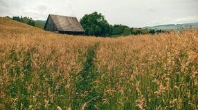 Vecchio granaio nel campo, Simon, Moieciu, Romania Fotografie Stock