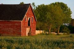 Vecchio granaio rosso del paese Fotografia Stock