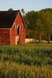 Vecchio granaio rosso del paese Fotografie Stock