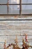 Vecchio granaio sopravvissuto Fotografia Stock Libera da Diritti