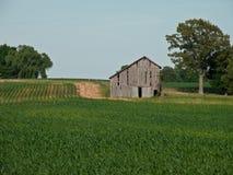 Vecchio granaio su un'azienda agricola fotografia stock