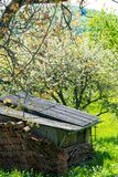 Vecchio granaio in un giardino denso immagini stock libere da diritti