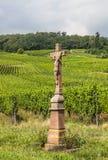 Vecchio incrocio nella vigna, Francia Fotografia Stock