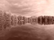 Vecchio lago Fotografia Stock