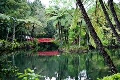 Vecchio lago con un ponticello rosso Immagine Stock