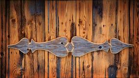 Vecchio legname con il pannello Fotografie Stock Libere da Diritti