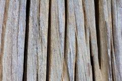 Vecchio legname della scanalatura di struttura Fotografia Stock
