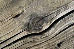 Vecchio legno 12 Fotografia Stock