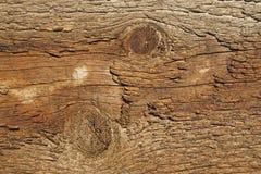 Vecchio legno con i nodi Fotografia Stock Libera da Diritti