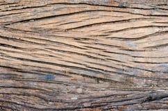 Vecchio legno della buccia immagini stock